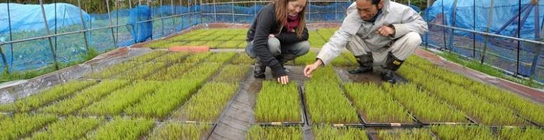 Innovations and New Technologies for Sustainable Farming